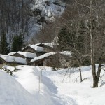 E' la prima nevicata significativa dell'anno