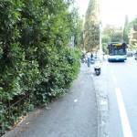 La strada tra Rapallo e Santa Margherita