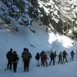 Inverno, gite sulla neve con le ciaspole
