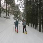 Con le racchette da neve nella foresta