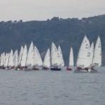 Spettacolo di vele nel mare di Rapallo