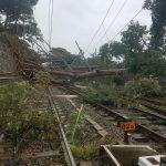 L'albero abbattutosi sulla sede ferroviaria