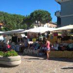 mercato arenelle