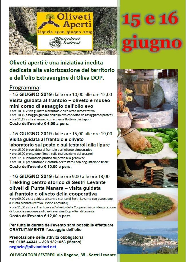 Oliveti Aperti è una iniziativa dedicata alla valorizzazione del territorio e dell'olio Extravergine di Oliva DOP