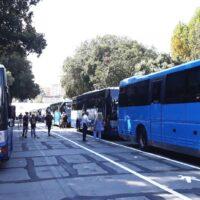 Bus Rolli