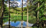 Bagno di Bosco_Lago delle Lame