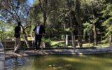 Abbattimento delle barriere architettoniche a Villa Rocca