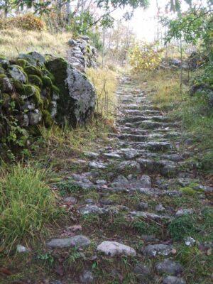 Sentiero Rezzoaglio (Cerisola)1